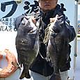 15_chinu1